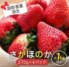 【ふるさと納税】いちご『さがほのか』270g×4パック(JA尾鈴産)