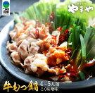 【ふるさと納税】牛もつ鍋&野菜セット(白味噌味)4〜5人前《都農町加工品》
