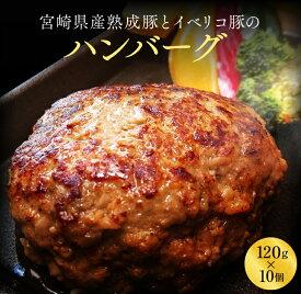 【ふるさと納税】宮崎県産熟成豚とイベリコ豚のハンバーグ120g×10個