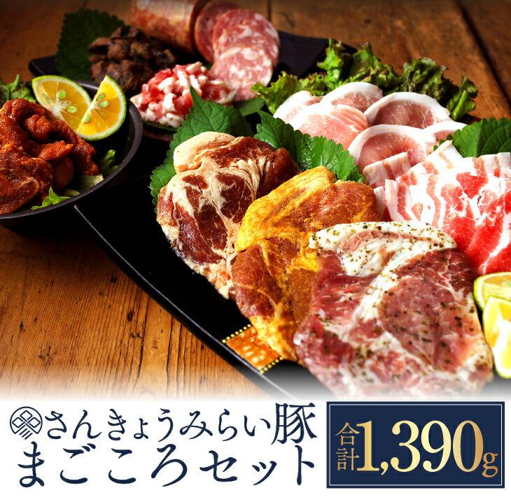 【ふるさと納税】☆さんきょうみらい豚☆まごころセット