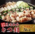 【ふるさと納税】宮崎県産黒毛和牛もつ鍋(醤油味)10人前