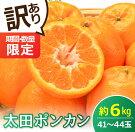 【ふるさと納税】期間・数量限定《訳あり》太田ポンカン(約6kg)フルーツ果物みかん