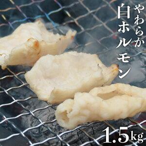 【ふるさと納税】J-5 白ホルモン 約1.5kg 豚肉 冷凍 宮崎県門川町 送料無料