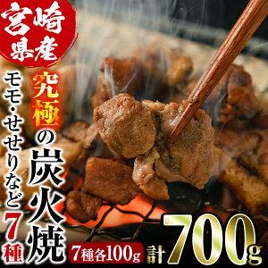 【ふるさと納税】究極の炭火焼(合計700g・7種各100g)宮崎県産鶏肉使用!もも・むね・せせりなど7部位を食べ比べ!【V-3】【味鶏フーズ】