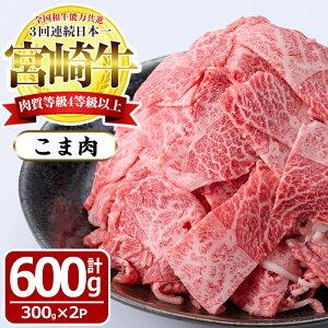 【ふるさと納税】宮崎牛!牛こま肉(計600g・300g×2袋)多彩な用途で、あると便利な牛肉!肉じゃがや野菜炒めや牛丼に!【MF-8】【エムファーム】