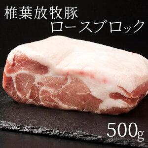 【ふるさと納税】【予約受付】やわらかでさっぱりとした脂が美味しい 【椎葉放牧豚 ロースブロック 500g】 ストレスフリーの大自然で育った希少豚