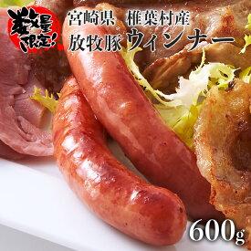 【ふるさと納税】【予約受付】【数量限定】椎葉放牧豚 人気のウインナー 600g【幻の逸品】