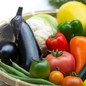【ふるさと納税】【予約受付】日本三大秘境「椎葉村」の野菜セット【2021年7月〜8月配送】
