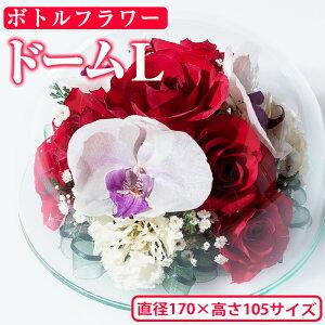 【ふるさと納税】ボトルフラワー<ドームL・Φ165×H123>日之影の季節の花やお好きな花をボトルに!【D-4】【ボトルフラワーatelier4-flowers】