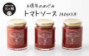 【ふるさと納税】四億年のめぐみ「トマトソース」240g×3本