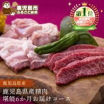 【ふるさと納税】鹿児島県産精肉堪能6か月お届けコース