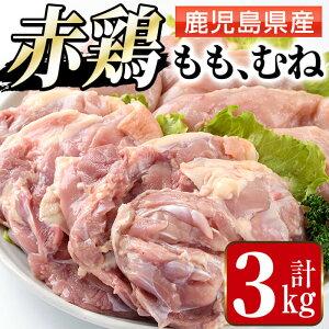 【ふるさと納税】赤鶏もも肉・ムネ肉セット(計3kg)鹿児島県産の鶏肉を2種お届け【まつぼっくり】