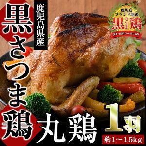 【ふるさと納税】かごしまブランド地鶏!丸鶏(計約1〜1.5kg)国産!歯ごたえと柔らかさのバランスがとれた黒さつま鶏!【ダイゼンファーム】