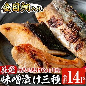 【ふるさと納税】<金目鯛入り・合計14P>金目鯛!天然ぶり!さば!漁師がつくる味噌漬け(3種・合計14P)厳選した魚介を特製みそで漬け込みました♪【指宿山川水産合同会社】