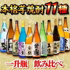 【ふるさと納税】種子島の焼酎11酒とおつまみ・お菓子セットA