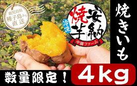 【ふるさと納税】数量限定!種子島中園ファームの熟成焼き安納芋(冷凍)400g×(8袋+2袋)