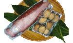 【ふるさと納税】種子島特産水イカ・トコブシ