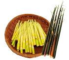 【ふるさと納税】ロケット竹(ニガ竹)2kg