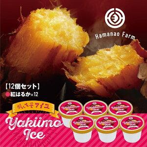 【ふるさと納税】焼き芋アイス 紅はるか (12カップ)高糖度 の 甘い 焼き芋 を使った 濃厚 な アイスクリーム デザート スイーツ アイス カップアイス 詰め合わせ 詰合せ セット 冷凍 焼芋 さ