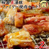 【ふるさと納税】桜島美湯豚ファミリー焼肉セット