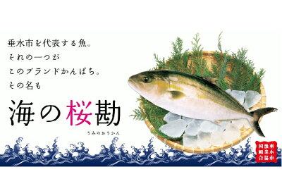 「海の桜勘」セット