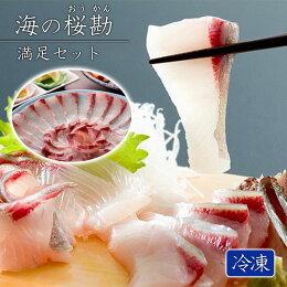 【ふるさと納税】『海の桜勘』満足セット