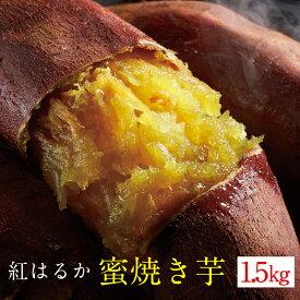 【ふるさと納税】 さつまいも 紅はるか 焼き芋 1.5kg(冷凍)| 鹿児島県 垂水市 蜜焼き芋 送料無料 さつま芋 やきいも やき芋 お取り寄せ 財宝