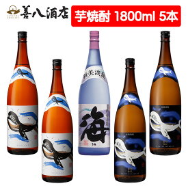 【ふるさと納税】大海酒造特選 5本セット