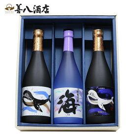 【ふるさと納税】大海酒造  720ml 3本セット