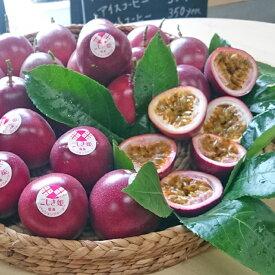 【ふるさと納税】【季節限定】甑島のパッションフルーツ『こしき姫』(約35〜40個) 合計3kg