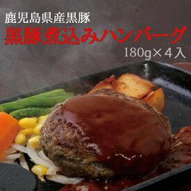 【ふるさと納税】鹿児島県産黒豚煮込みハンバーグ