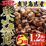 【ふるさと納税】鹿児島県産の鶏肉「薩摩地鶏」の炭火焼鳥Aセット【地どりのたけちゃん】