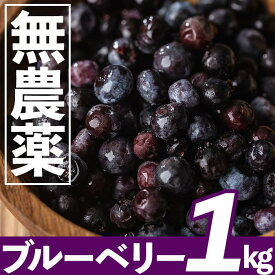 【ふるさと納税】【数量限定】鹿児島県曽於市産 無農薬栽培ブルーベリー 約1kg【古里庵】