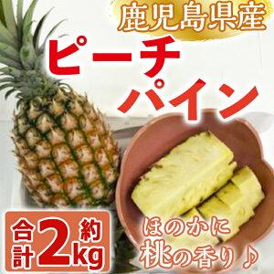 【ふるさと納税】【数量限定】ハウス栽培!曽於のピーチパイン!計約2kg(1kg以上×2個セット)パイナップルなのにほのかに桃の香り♪【大徳産業】
