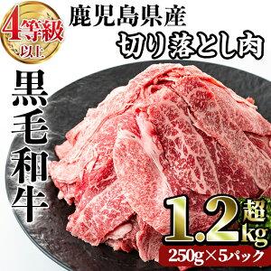 【ふるさと納税】国産!鹿児島県産黒毛和牛(4〜5等級)切り落とし肉セット!合計1.25kg(250g×5パック)!計1kg超!牛丼や肉じゃが、カレーなどに♪普段のお料理がワンランクアップ!冷凍でお届