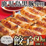【ふるさと納税】鹿児島黒豚餃子60個