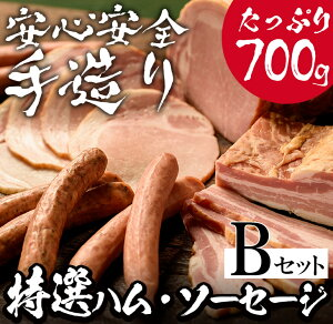 【ふるさと納税】蔵特選ハム・ソーセージセットB