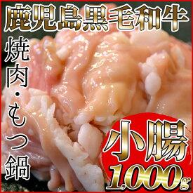 【ふるさと納税】<鹿児島県産黒毛和牛>小腸(しょうちょう) ホルモン(1kg:もつ鍋・焼肉用)鮮度そのまま!冷凍でお届け!鍋はもちろんバーベキューや焼き肉に♪【バクロ】