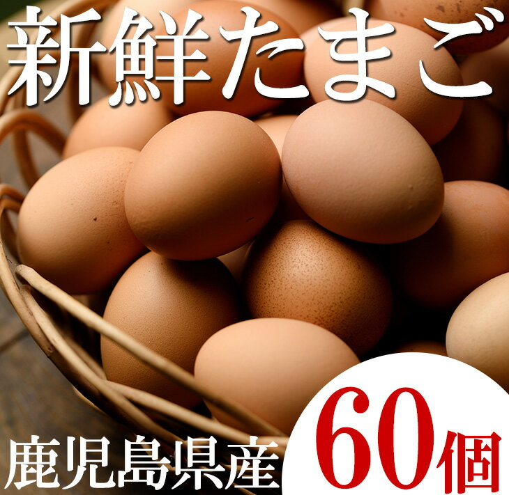 【ふるさと納税】薩摩ヤブサメ酵素卵60個【ヤブサメファーム】
