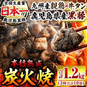 【ふるさと納税】炭火焼3種セット(牛タン炭火焼100g×3パック、黒豚100g×3パック、親鶏150g×4パック・計10パック計1.2kg)炭火で丁寧に焼き上げた牛タン・豚肉・鶏肉の炭火焼!おつまみやおかず
