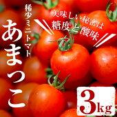 【ふるさと納税】稀少ミニトマトあまっこ絶妙な糖度と酸味のバランス!大容量3kg【オリザ鹿児島ファーム】
