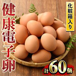 【ふるさと納税】《数量限定》鹿児島県産!健康電子卵(計60個・10個入り×6P)電子イオンを与えた水と飼料で体質改善された親鶏から生まれた新鮮なタマゴ!小分けパック入り【峯元養鶏】