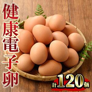 【ふるさと納税】《数量限定》鹿児島県産!健康電子卵(計120個・10個入り×12P)電子イオンを与えた水と飼料で体質改善された親鶏から生まれた新鮮なタマゴ!小分けパック入り【峯元養鶏】
