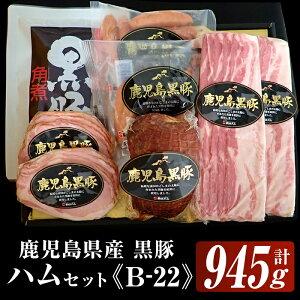 【ふるさと納税】(B-22)鹿児島黒豚ハムセット(5種・合計945g)鹿児島特産の黒豚を使用したハムやベーコンやウインナー、焼豚、角煮セット!【鹿児島協同食品】