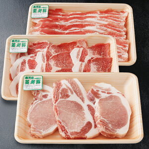 【ふるさと納税】【鹿児島県産】茶美豚 しゃぶしゃぶ用 & とんかつ用 900g