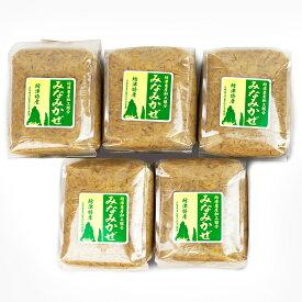 【ふるさと納税】【無添加】南さつまばぁばの手作り味噌5kg(1kg×5)