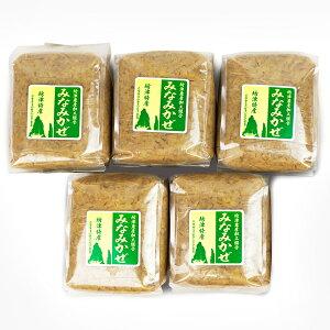 □【ふるさと納税】【無添加】南さつまばぁばの手作り味噌5kg(1kg×5)