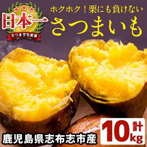 【ふるさと納税】<先行予約受付中!7月20日〜8月10日にお届け予定>鹿児島県産!栗にも負けない!ホクホクさつまいも(ミックスサイズ5kg×2箱・計10kg)安心・安全なさつま芋を生産量日本一
