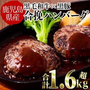 【ふるさと納税】【毎月数量限定】鹿児島県産黒毛和牛と黒豚を使った肉屋の贅沢合挽き生ハンバーグ15個(計1.6kg以上)1個約110gの大きめサイズでおかずやお弁当・煮込みハンバーグなど食べ