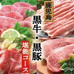 【ふるさと納税】お肉の定期便Be-504